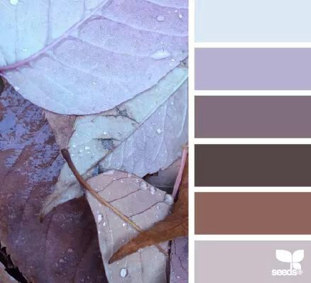 21 Best Color Combinations Images On Pinterest