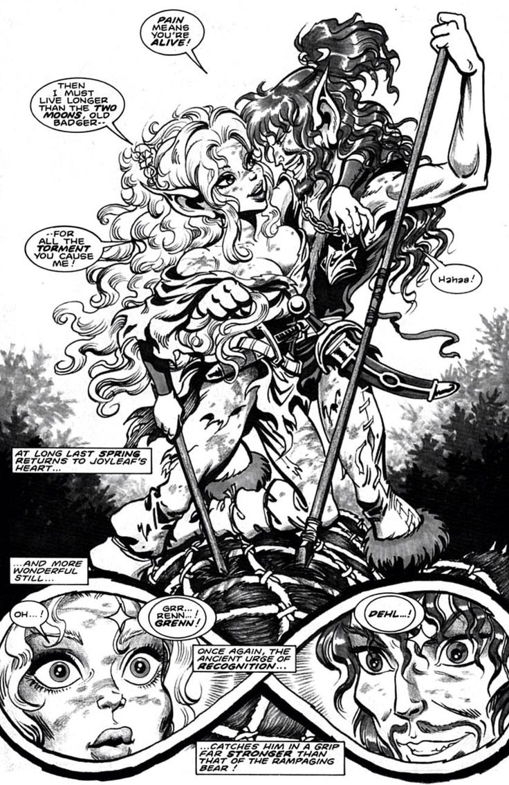 Recognizion, Joyleaf and Bearclaw. Elfquest