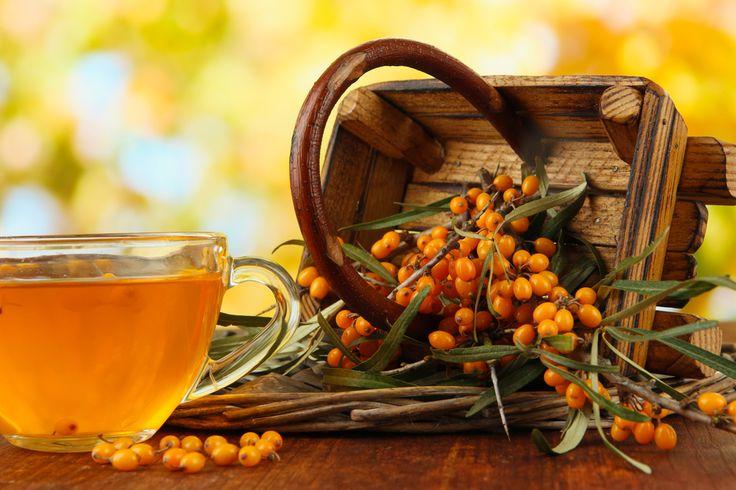 Осень — прекрасное время года, которое дарит нам много сезонных овощей и фруктов, но вместе с этим осенью наш организм больше всего подвержен простудам. Боль в горле, кашель, насморк, хроническая...