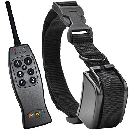 Dog Training Collar With Remote By Pethin
