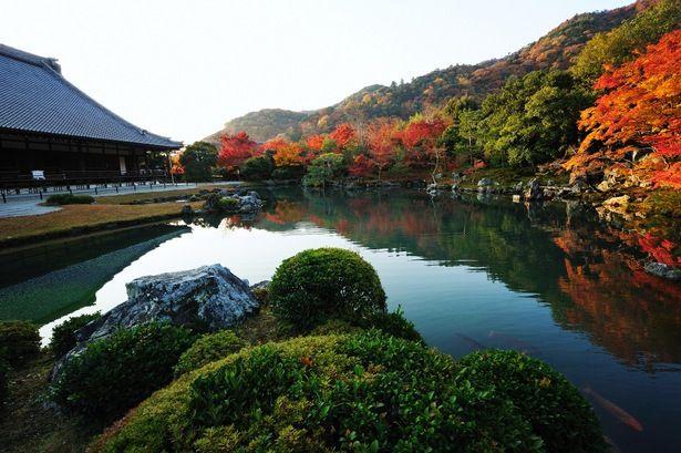 Tenryuuji temple Arashiyama, Kyoto.