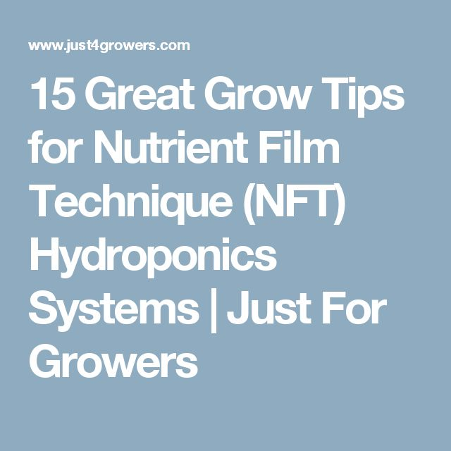 15 Great Grow Tips for Nutrient Film Technique (NFT) Hydroponics Systems | Just For Growers