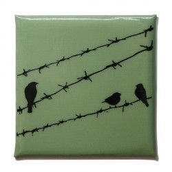 Birds on barbed wired