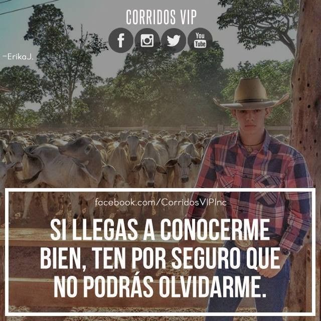 No podras olvidarme.!   ____________________ #teamcorridosvip #corridosvip #quotes #frasesvip