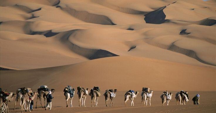 Uma caravana cruza as dunas esculpidas do deserto do Saara. A imagem icônica do Saara são as dunas do horizonte, mas a maior parte do deserto é de planaltos rochosos
