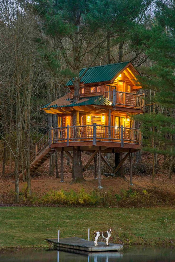 Love this photo taken by a local photographer Carolyn Bates - check her out and her other works on her web site and blog - she rocks! GO VERMONTERS!!!!!  Astauffer-treehouse-13ag_BAT8728d-sh-1115.jpg