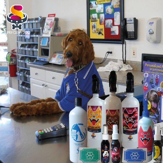 """#Distribuye Productos Eco-Amigables Para Mascotas!!! Gana $$$►Inicia Tú Negocio◄ Con """"SUPER CLEAN DOG"""" Tienes tienda de mascotas, veterinaria, tienda orgánica, o quieres tener ingresos con productos de calidad??? #SinOlorPerruno Aquí Esta!!!"""