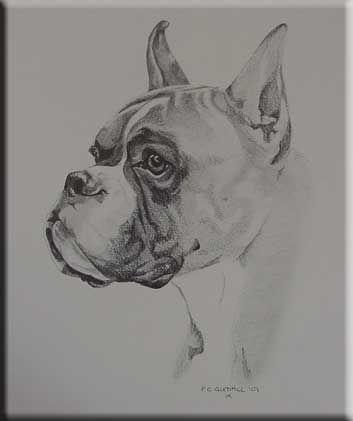Pin by John David Bean on Tattoos | Boxer dog tattoo ...
