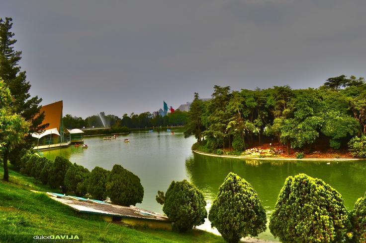 Lago de Chapultepec, Ciudad de Mexico. Mexico City
