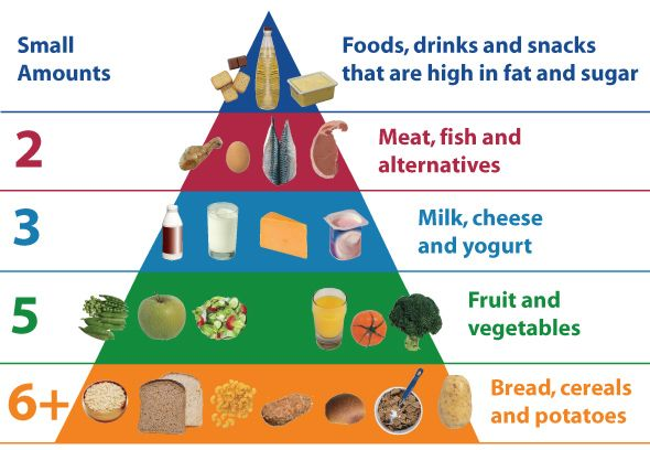 The Food pyramid is a great starting point to understanding a balanced diet. It can be adapted to suit any specific diet from Vegan to Coeliac. Substituting foods is easy when you know which category they belong in.