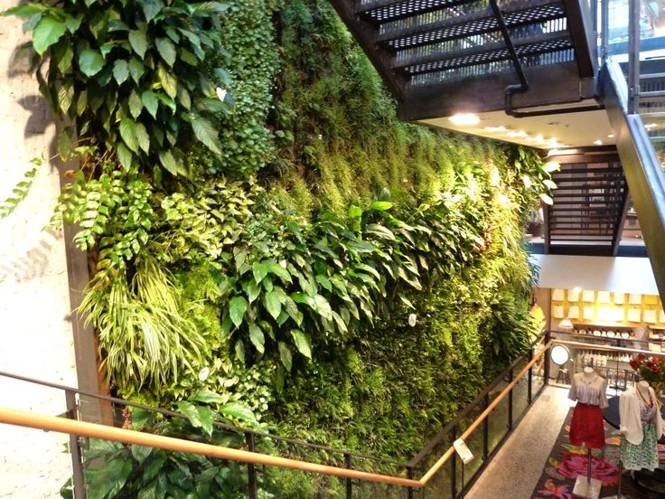 Making a living wall - Google Search