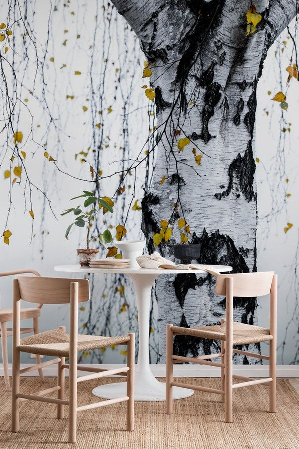 Birch Tree 1 Wall mural (With images) Birch tree