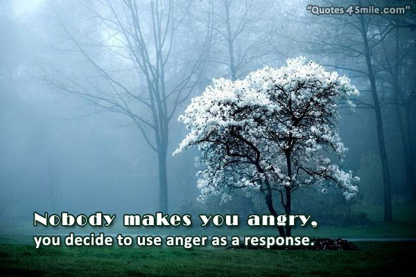 Anger Quotes Best Collection With Wise, Funny Angry Quotes