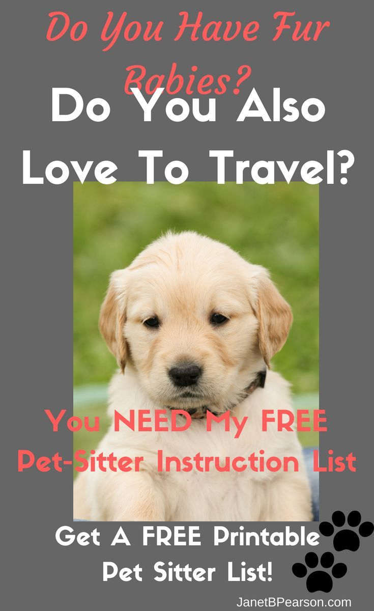 Free Pet Sitter Instructions Printable Dog Daycare Near Me Pets Cute Little Animals