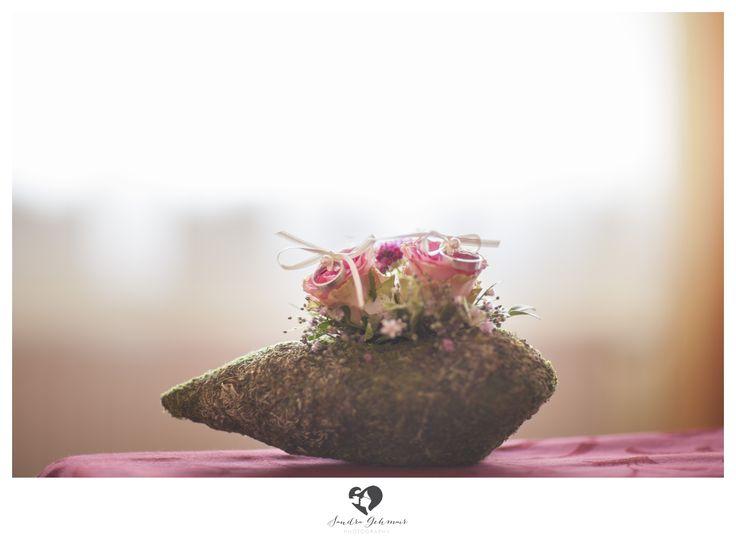 #ring #weddingring #wedding #hochzeit #groom #bride #braut #braeutigam #geschenk #present love #forever #fuerimmer #engagement #engagementring #verlobung #verlobungshooting #silver #gold #weddinghour #stone #flowers #moss #blumen #stein #moos
