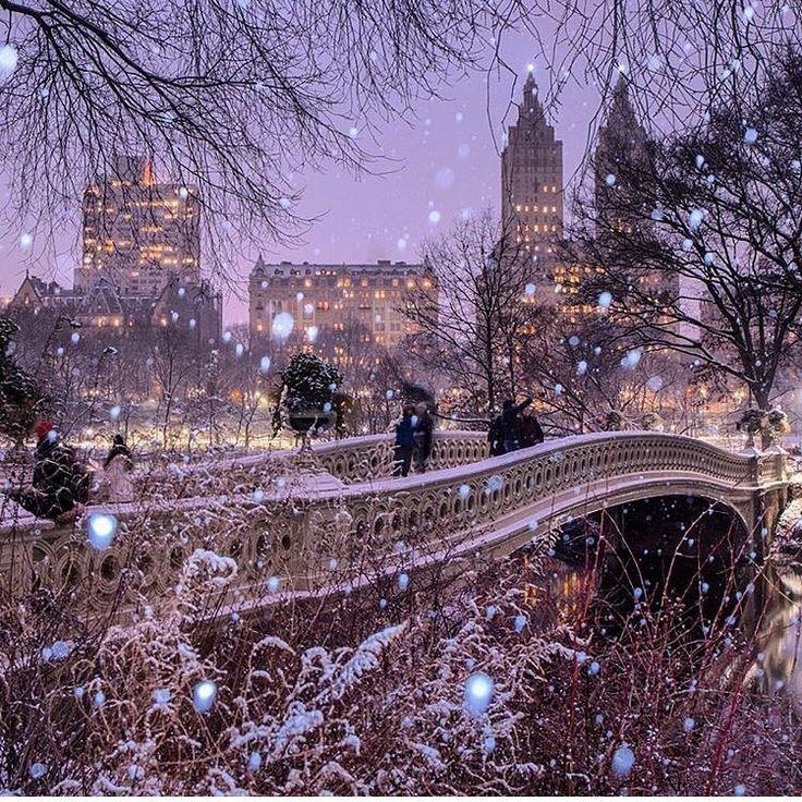 Central Park und Schnee.