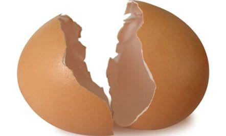 11 Surprising Uses for Eggshells (Slideshow)