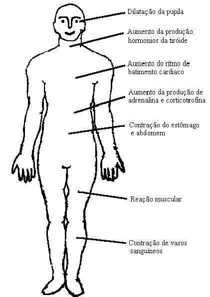 Exposição do Corpo Humano á Vibração • Prevenção Online