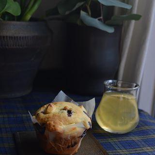 今日のおやつはブルーベリーとクリームチーズのマフィン。 我ながらすごく美味しくできた...𓅯𓇢 それと自家製レモンジンジャーシロップをお水で割って𓇼  #mercurystudio#kazuoba#slabplate#pottery#ceramic#colorado#muffin#blueberry#creamcheese#gingerlemon#homemadesweets#うつわ#ブルーベリーマフィン#おやつ#自家製シロップ