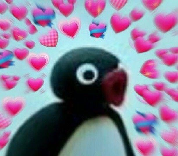 Pin By Lilly Hicks On Feels Cute Love Memes Pingu Memes