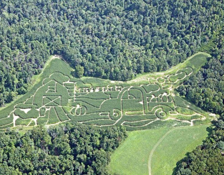 10 acre corn maze in West Virginia!