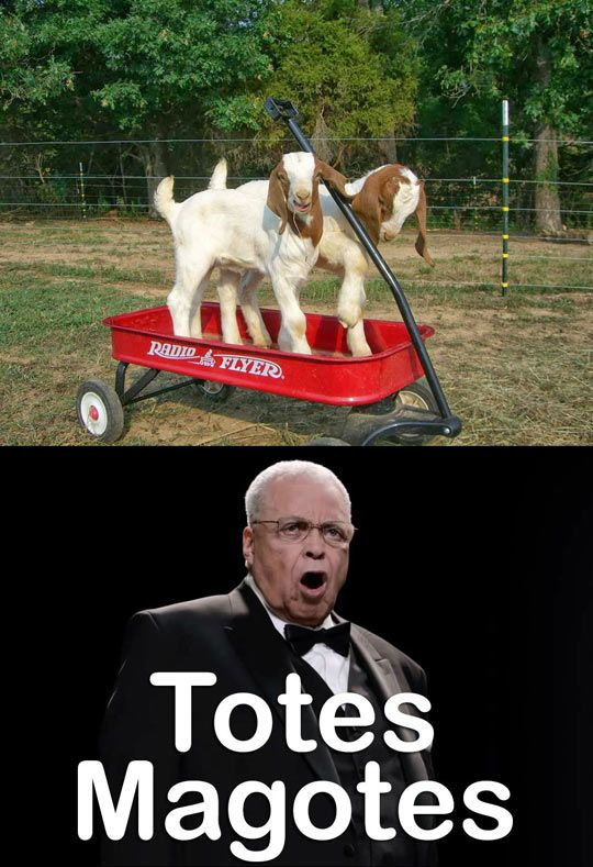 Totes Magotes - this is the only acceptable use of this phrase