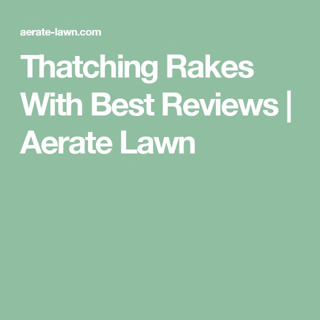 Thatching Rakes With Best Reviews | Aerate Lawn