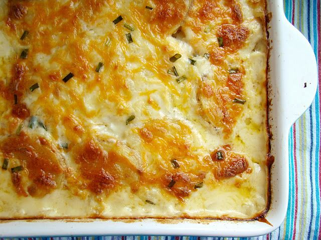 Scalloped potatoes... it's like a meeting of my love of mac and cheese and the mister's love of potatoes. Sounds PERFECT on a cold day.