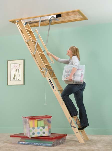 attic ladder for roof storage