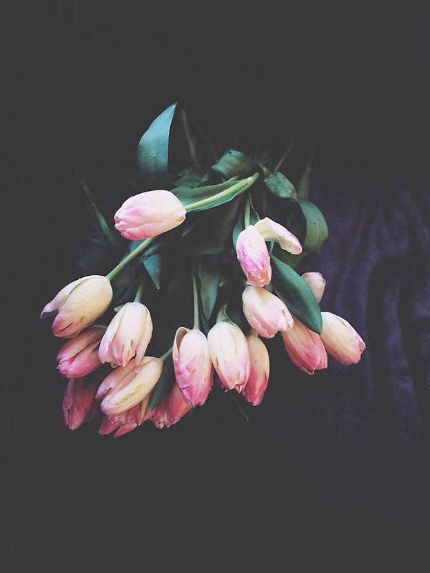 tulips from my sweet friend Annette Deux