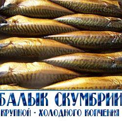Компания «РЫБНОЕ ИЗОБИЛИЕ» предлагает ценную промысловую рыбу для продажи на прилавках столицы и Подмосковья. Мясо этой рыбы ценится за высокое содержание жира (до 16,5% от общей массы), большую...