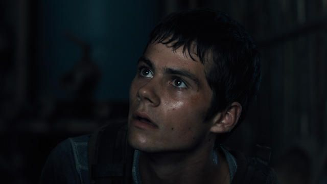 The New Maze Runner Trailer. I HAVE NEVER BEEN SO EXCITED FOR A MOVIE. I JUST CAN'T EVEN RIGHT NOW. SPEECHLESS.