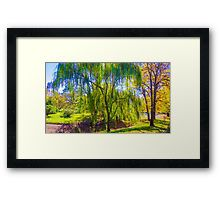 Weeping Gum Tree in Autumn at Malmsbury Framed Print