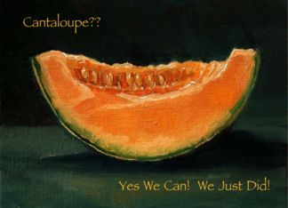 Elopement Announcement: Painting of Cantaloupe: Pun, Funny, Humor (956143)