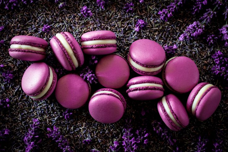 Macarons with white Valrhona chocolate ganache and lavender.
