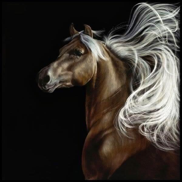 Horse mane=wings