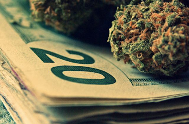 Paying for Pot Could Get Easier and Maybe Even Legal | In Mary Jane We Trust❤️✌️ | Pinterest | Cannabis, Weed and Tall plants