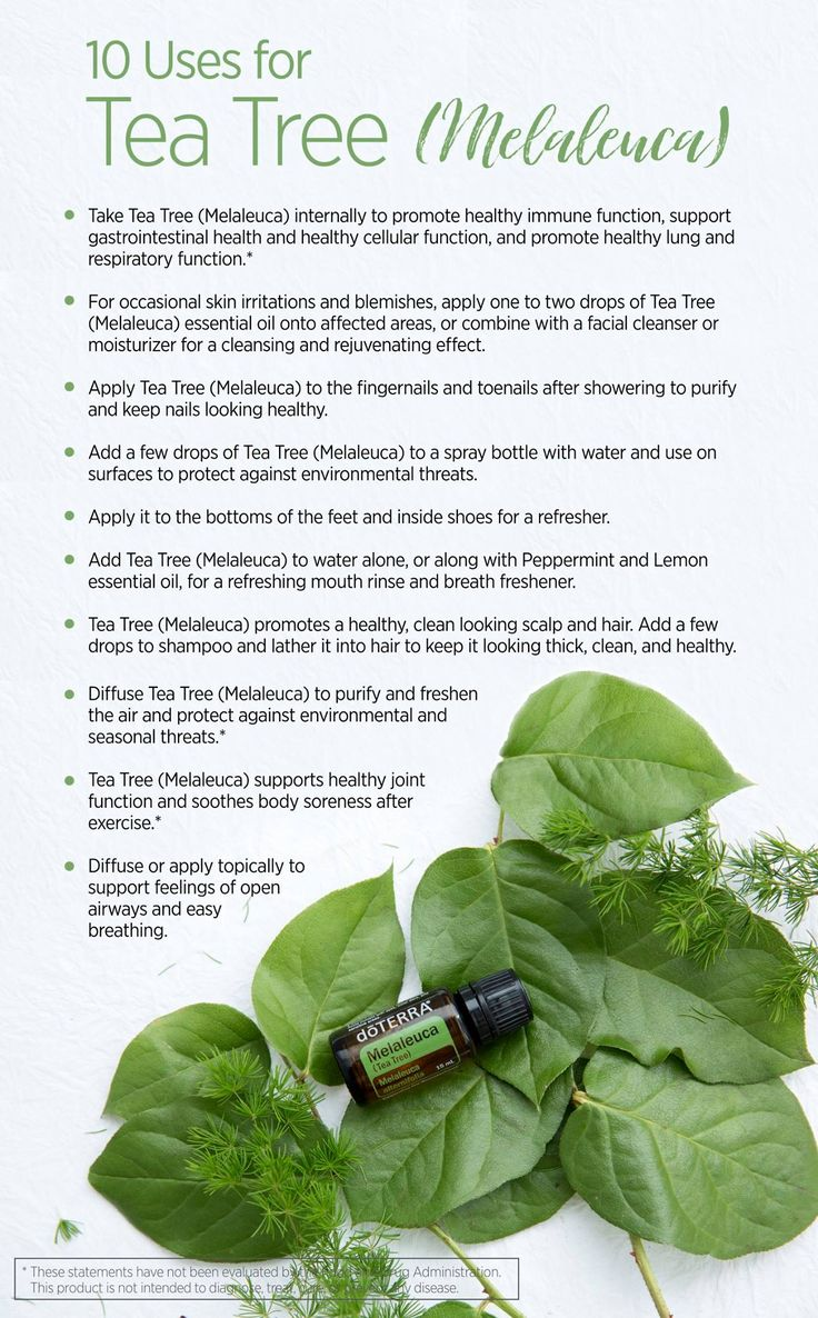 There are so many different ways to use Melaleuca (Tea Tree) essential oil. Learn why you should carry one with you always by clicking on the pin!
