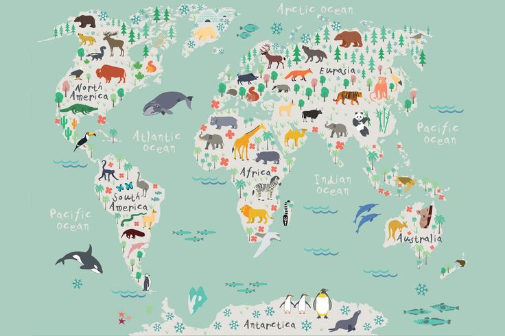 Safari Kids Map Mural Wallpaper, custom made to suit your wall size by the UK's No.1 for murals. Custom design service and express delivery available.