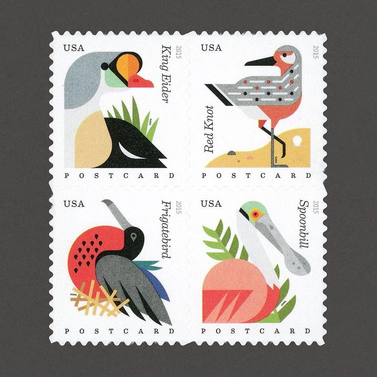Coastal Birds. USA, 2015. Design: Greg Breeding + Tyler Lang. #graphilately #mnh #graphiUSA