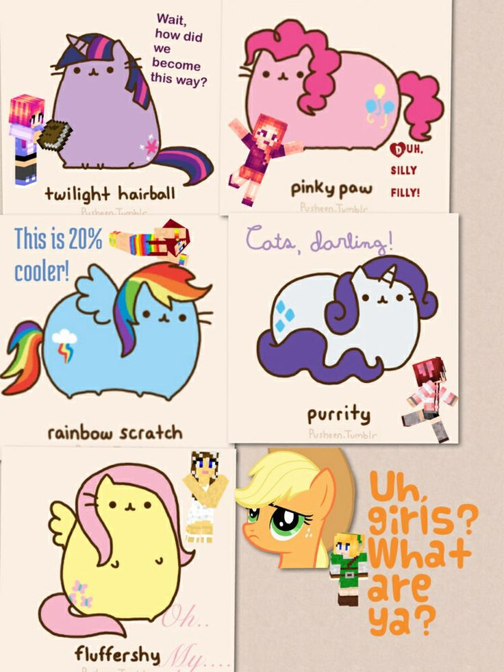 Mlp Fim As Pusheen Except Aj I Also Gave Them Minecraft