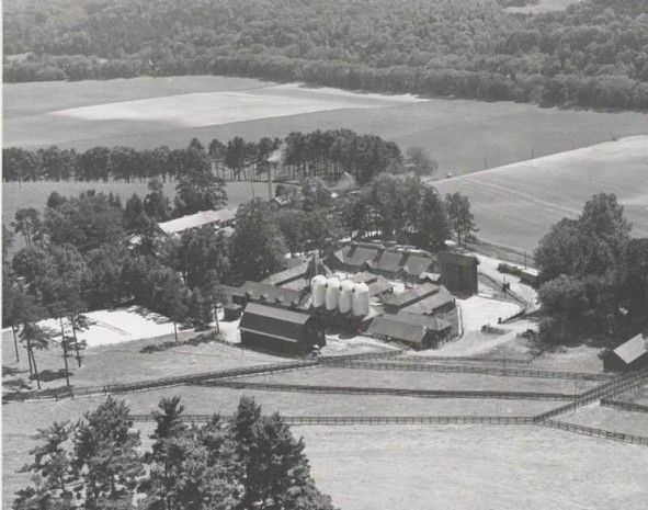 588 best north carolina asheville images on pinterest asheville biltmore dairy farms near asheville was founded in 1897 by george w vanderbilt owner malvernweather Images