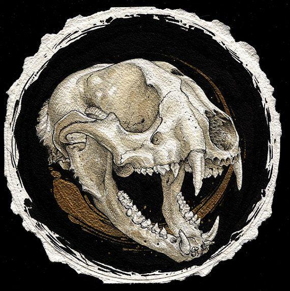 Raccoon skull by mcalisterart on Etsy