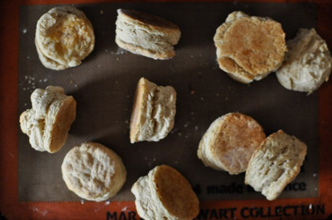 love biscuits, but I haven't tried these: Beer biscuits with meyer ...