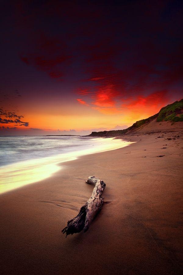 Long Reef Beach, Sydney Australia