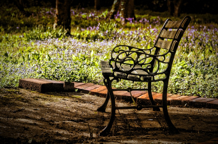 Meadow Bench