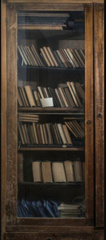 Old books in a vintage library door wrap - Rm wraps Store - 1