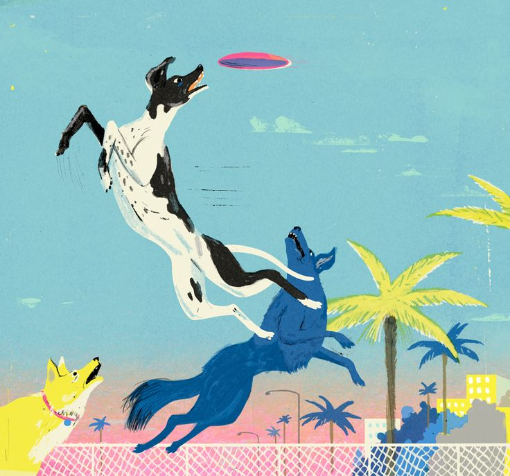 Byron Eggenschwiler, For Mental Floss magazine about Ashley Whippet, the dog frisbee pioneer, 2016 | Discover more art on iheartmyart.com | #art | #artist | #illustration | #iheartmyart