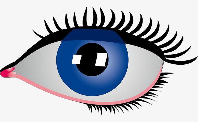 الرسوم المتحركة البسيطة عيون زرقاء كبيرة Cool Eyes Blue Eye Makeup Beauty Products Drugstore