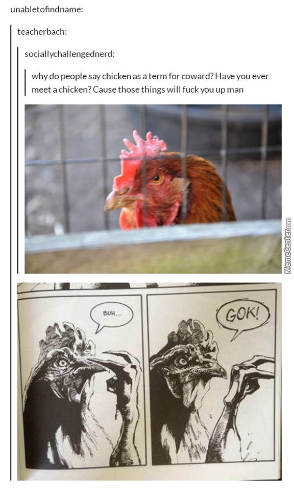 Chicken Are Bros 🐔 #funnymeme #funny #memes #meme
